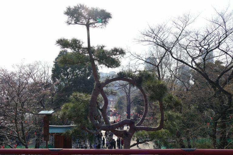 Ueno-Park-in-Tokyo