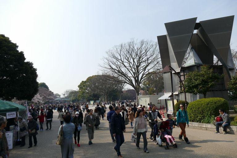 Japan-food-street4