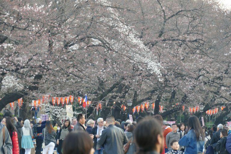 Ueno-Park-Tokyo