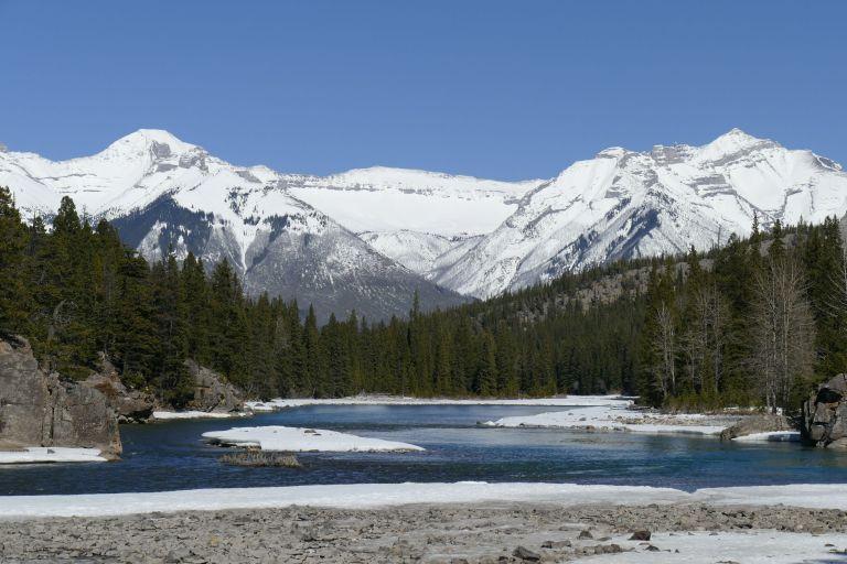 Spring-in-Alberta58
